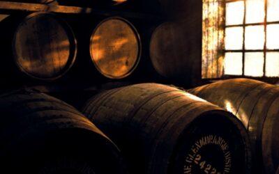 威士忌風味來源 口感與味道的融合