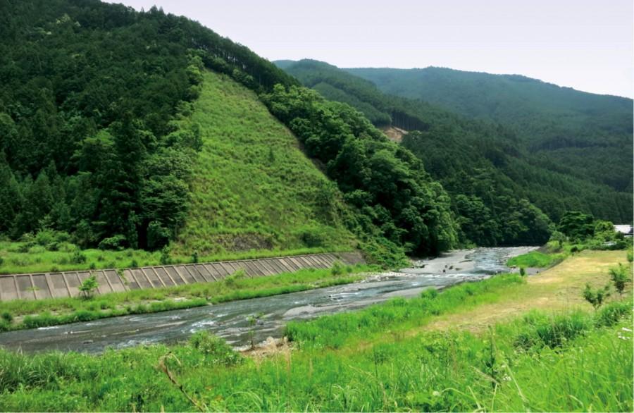 日本威士忌新勢力震驚全球
