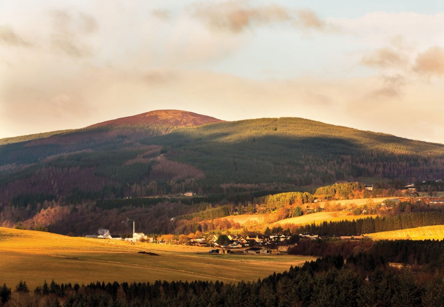 Craigellachie – Home of the World 's Best Single Malt (1)